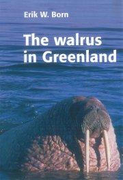 the walrus in greenland - bog
