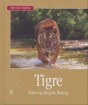 tigre - bog