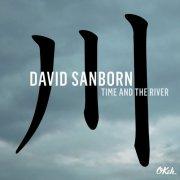 david sanborn - time and the river - Vinyl / LP