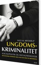 ungdomskriminalitet, socialpolitik og socialpædagogik - bog