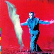 peter gabriel - us - Vinyl / LP