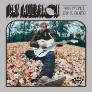 dan auerbach - waiting on a song - Vinyl / LP