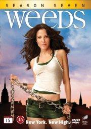 weeds - sæson 7 - DVD
