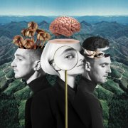 clean bandit - what is love? - cd