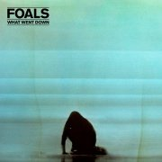foals - what went down - cd