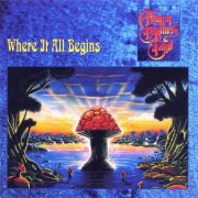 the allman brothers band - where it all begins - Vinyl / LP