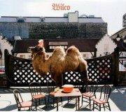 wilco - wilco  - the Album