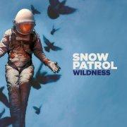 snow patrol - wildness - picture disc - Vinyl / LP