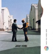 pink floyd - wish you were here - Vinyl / LP