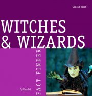 witches and wizards - bog