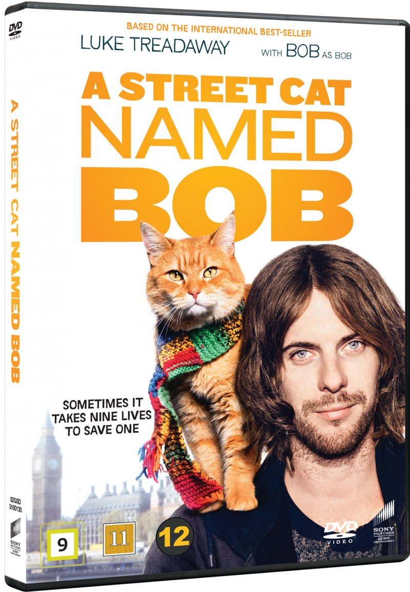 Image of   A Street Cat Named Bob - DVD - Film