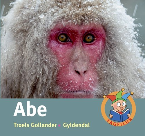 Image of   Abe - Fagfilur - Troels Gollander - Bog