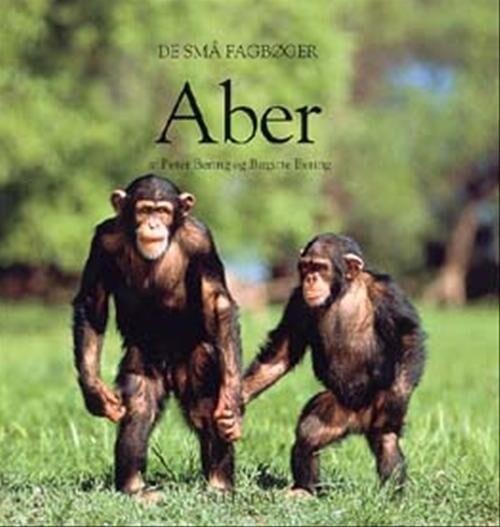 Image of   Aber - Peter Bering - Bog