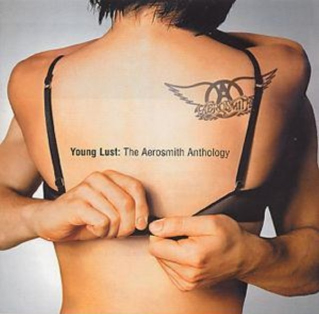 Image of   Aerosmith - Young Lust: The Aerosmith Anthology - CD