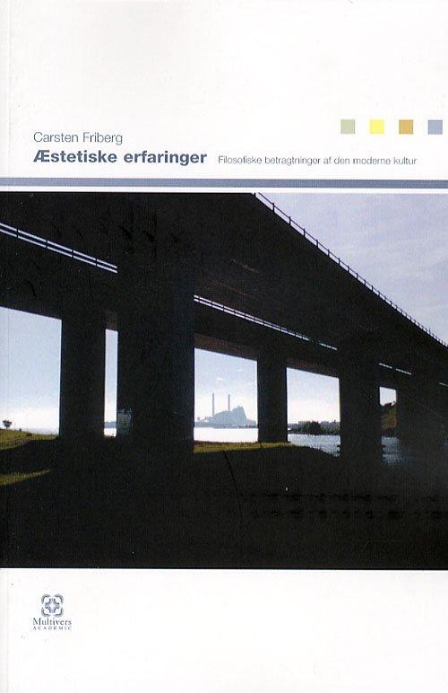 æstetiske Erfaringer - Carsten Friberg - Bog