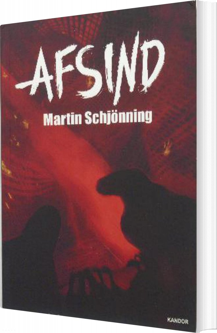 Image of   Afsind - Martin Schjönning - Bog