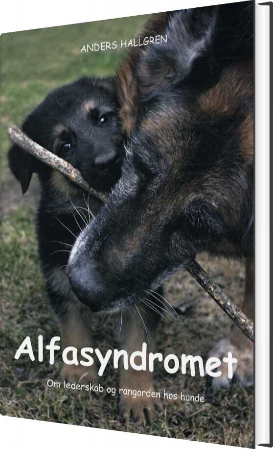 Image of   Alfasyndromet - Anders Hallgren - Bog