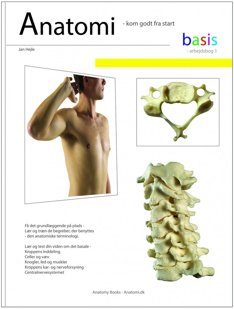 Image of   Anatomi - Basis - Arbejdsbog 1 - Jan Hejle - Bog