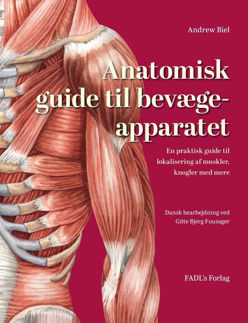 Image of   Anatomisk Guide Til Bevægeapparatet - Andrew Biel - Bog