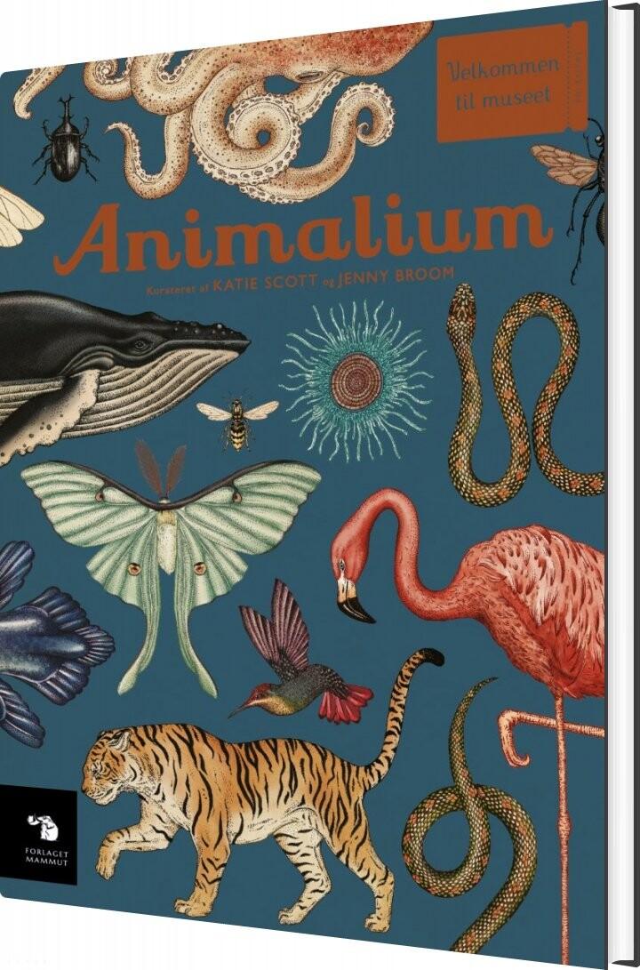 Image of   Animalium - Katie Scott - Bog