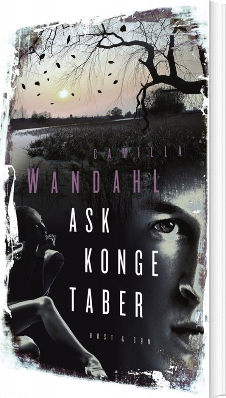 Image of   Ask Konge Taber - Camilla Wandahl - Bog