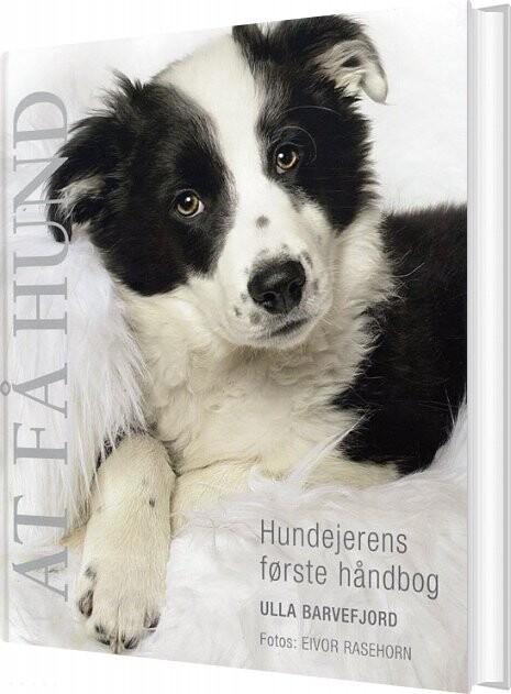 Image of   At Få Hund - Ulla Barvefjord - Bog