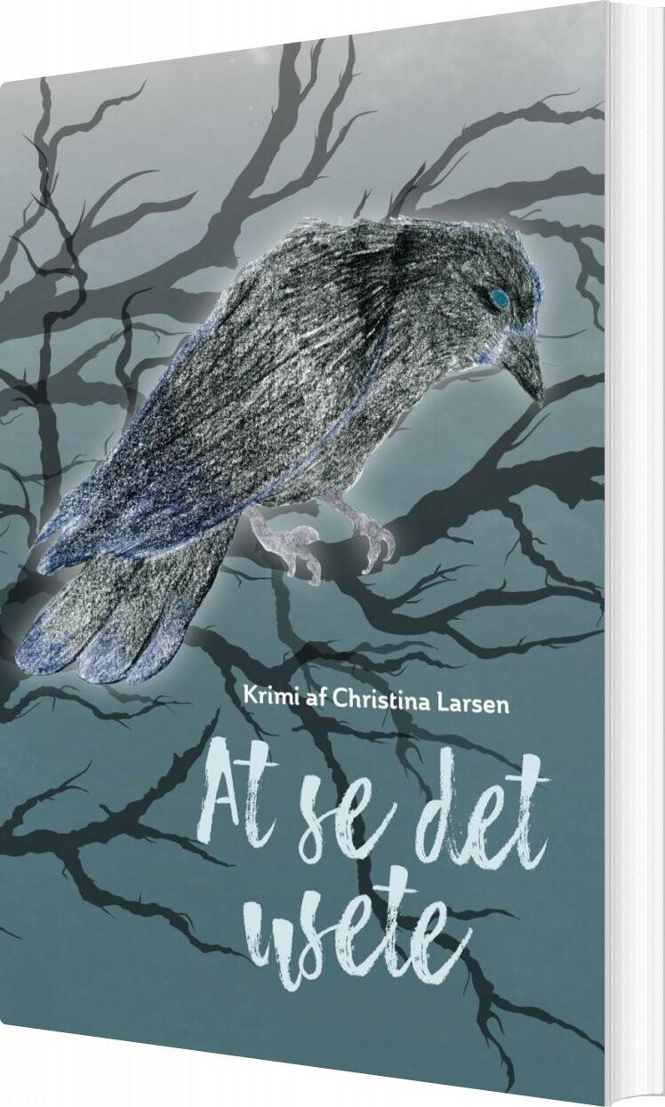 Image of   At Se Det Usete - Christina Larsen - Bog