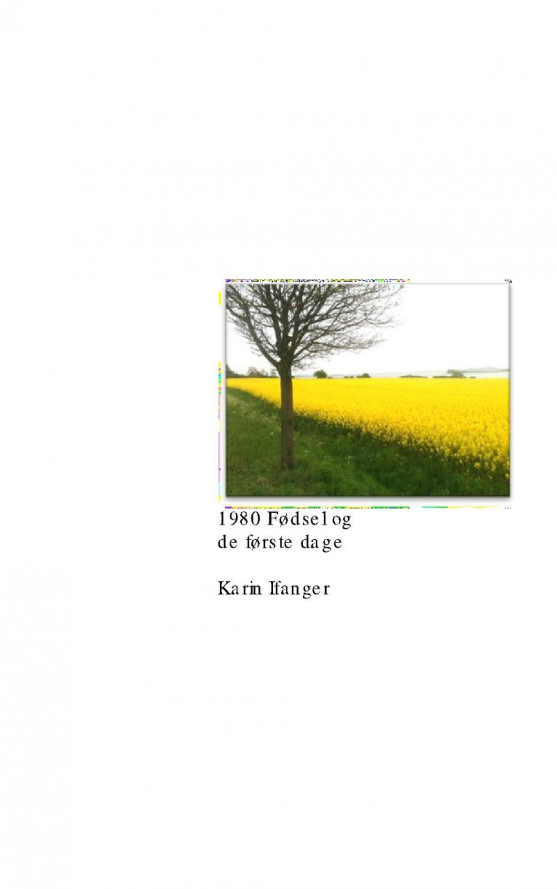 Image of   1980 Fødsel Og De Første Dage - Karin Ifanger - Bog