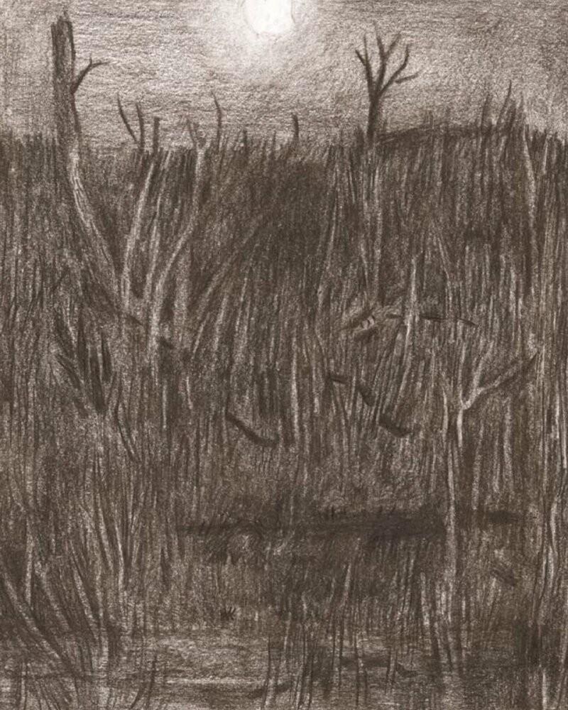 Image of   9 Piger - Liftet - Bjørn Rasmussen - Tegneserie