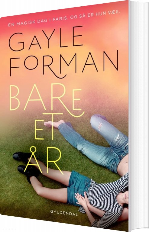 Image of   Bare Et år - Gayle Forman - Bog