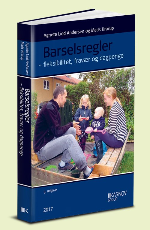 Barselsregler - Agnete Andersen - Bog