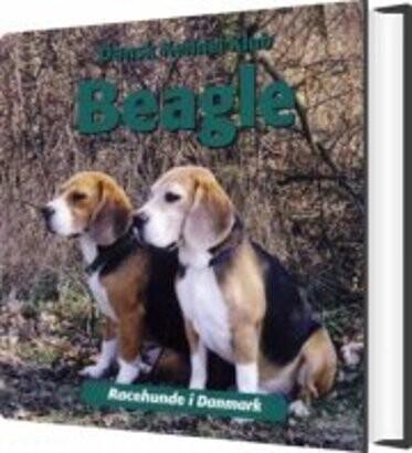 Image of   Beagle - Diverse - Bog