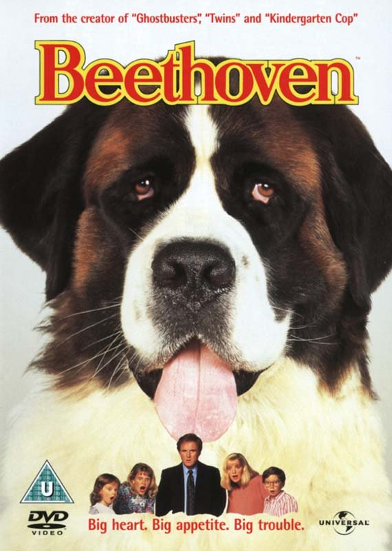 Image of   Beethoven - DVD - Film