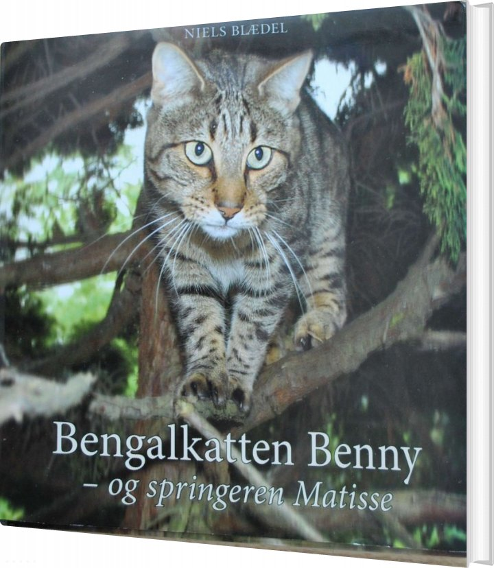 Image of   Bengalkatten Benny - Og Springeren Matisse - Niels Blædel - Bog