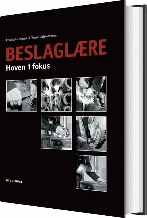 Image of   Beslaglære - Charlotte Frigast - Bog