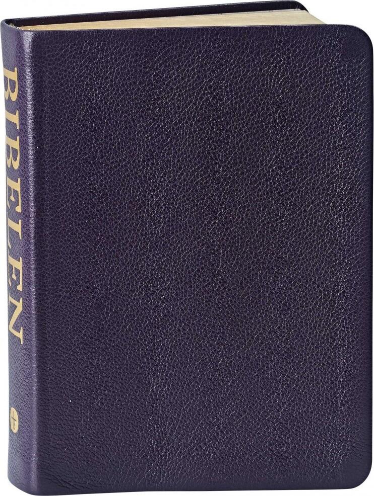 Image of   Bibelen Med Det Gamle Testamentes Apokryfe Bøger - Lille Format - Diverse - Bog