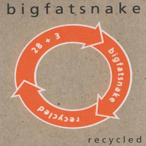 Image of   Big Fat Snake - Recycled - CD