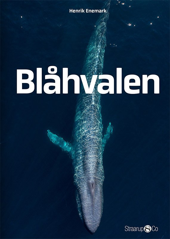 Image of   Blåhvalen - Henrik Enemark - Bog