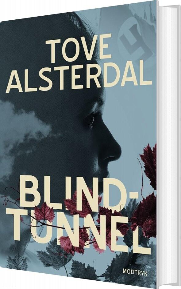 Image of   Blindtunnel - Tove Alsterdal - Bog