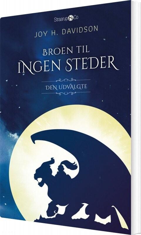 Image of   Broen Til Ingen Steder - Joy H. Davidson - Bog
