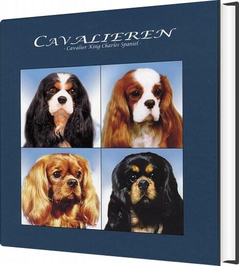 Image of   Cavalieren - Erik Fritzbøger - Bog