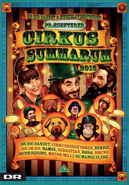 Image of   Cirkus Summarum 2013 - DVD - Film