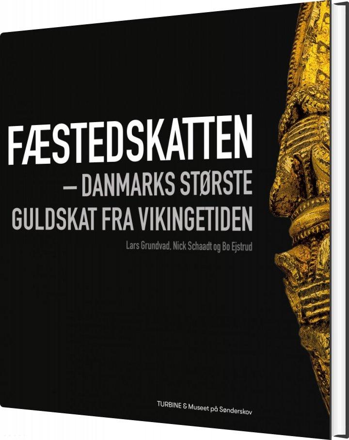 Fæstedskatten - Nick Schaadt - Bog