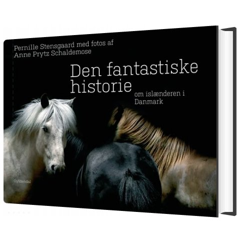 Image of   Den Fantastiske Historie Om Islænderen I Danmark - Pernille Stensgaard - Bog
