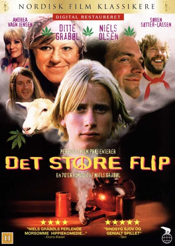Billede af Det Store Flip - DVD - Film