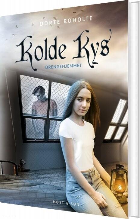 Billede af Drengehjemmet - Kolde Kys - Dorte Roholte - Bog