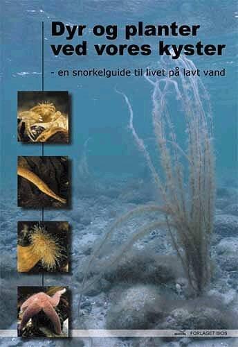 Billede af Dyr Og Planter Ved Vores Kyster - Dennis Lisbjerg - Bog