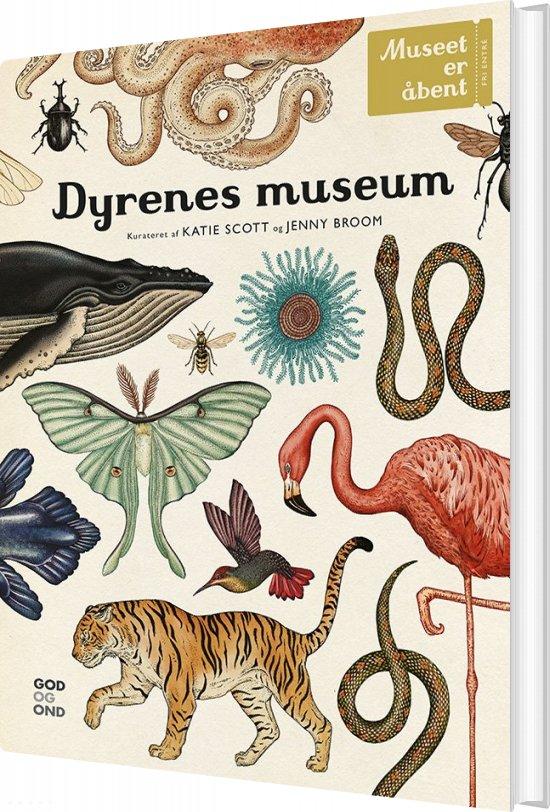 Image of   Dyrenes Museum - Katie Scott - Bog