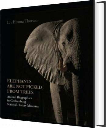 Elephants Are Not Picked From Trees - Liv Emma Thorsen - Bog