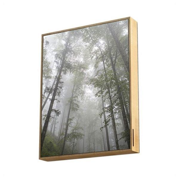 Image of   Energy Sistem - 2-i-1 Bluetooth Højtaler Og Billede - Natur Træ